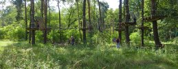 waldhochseilgarten-jungfernheide