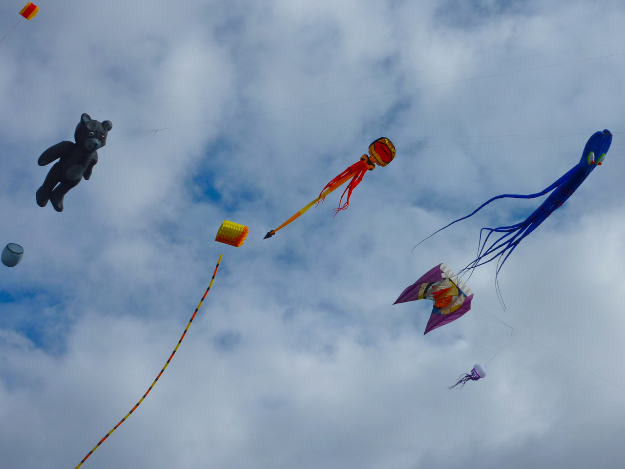 internationales-drachenfest-volkspark-potsdam-3