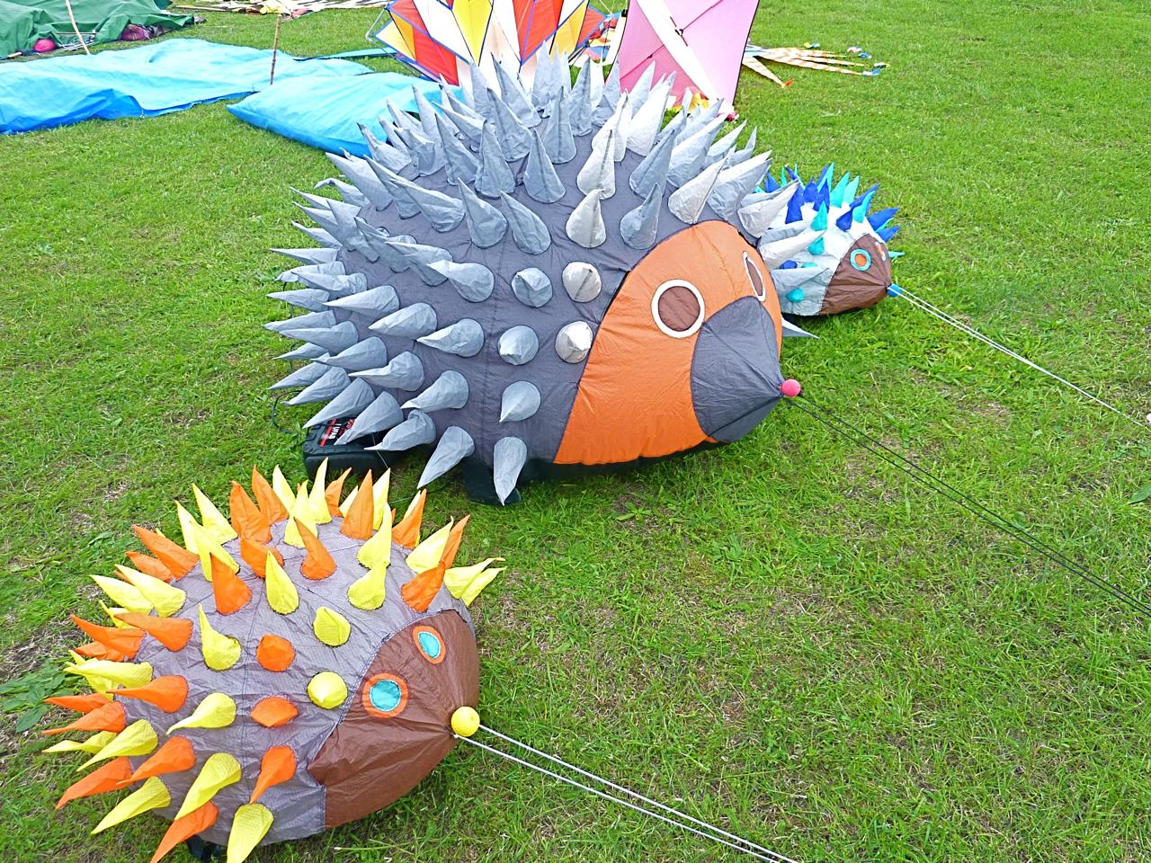 internationales-drachenfest-volkspark-potsdam-6