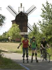 flaemingskate-drei-skater-vor-windmuehle-copyrightswfgabtfs