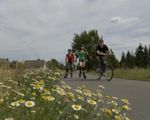 flaemingskate-skater-radfahrer-margeriten-copyrightswfgabtfs