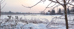 winter-berlin-1-galerie