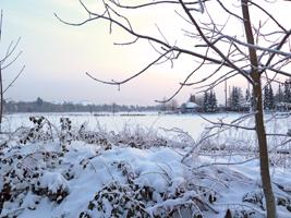 winter-berlin-1-klein