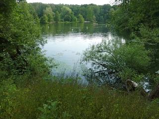 ausflugsziel-3-badesee-teufelssee-berlin-grunewald