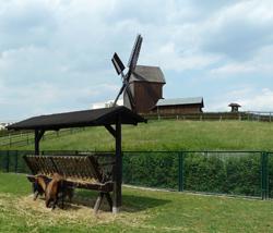 ad-bockwindmuehle-marzahn-berlin-250