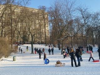 rodeln-preussenpark-IMG-20210210-WA0003