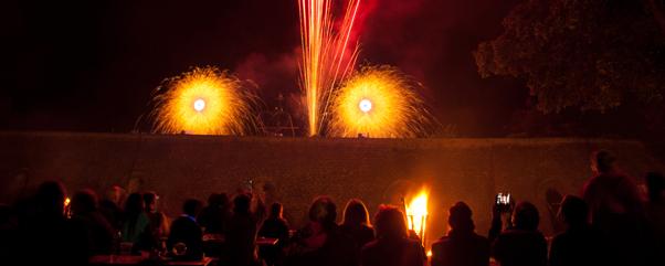 Spätsommernacht (4)© Ziegeleipark Mildenberg-feuerwerk 1