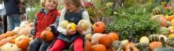 herbstfeste-berlin-spaethsche-baumschulen-traditionsfest-kinder-wochenende Artikelbild