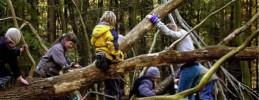Familienausflug-Berlin-Berliner-Waldschulen-Artikel