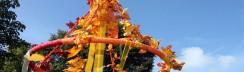 Veranstaltungen-Berlin- September-Oktober–Herbstfest-Drachenfest-Erntefest-Krone