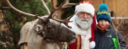 Weihnachtsmarkt_Späthsche-Baumschulen_Weihnachtsmann_Foto_Daniela-Incoronato_web