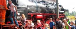 Dampflok-Fruehlingsfest-Bahnbetriebswerk-Schoeneweide-Berlin (4)