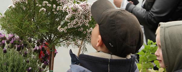 Kraeutertage_Spaeth_Foto_Daniela-Incoronato_osttern-spaeth-sche-baumschulen-ostereiermalen-krautertage-maerchen-fur-kinder