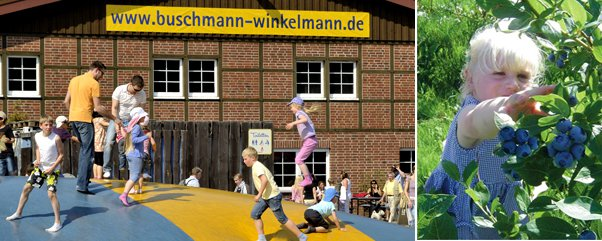 4193_crop_602x241_spargelhof-kleitrow-spielplatz-artikel-heidelbeeren
