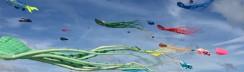 Drachenfestivall im Erlebnispark Paaren MAFZ Quallen Himmel