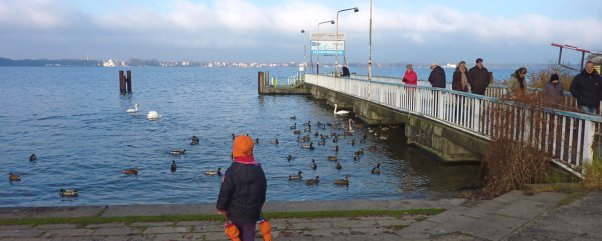Winterausflug zum Mueggelsee Berlin Eisbahn Kind am See