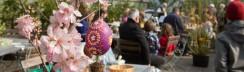 Ostern in den Spaeth'sche Baumschulen Berlin - Saisonstart mit Ostereiermalen in sorbischer Tradition_Foto_Daniela-Incoronato_1_print