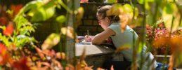 Sommerferienworkshop: Kinder-Kunst-Wiese im Park Sanssouci
