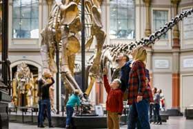 Herbstferien Berlin 2018 - Ferienangebote für Familien und Kinder im Naturkundemuseum
