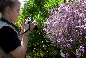 FOTOGRAFIEREN IM BOTANISCHEN GARTEN