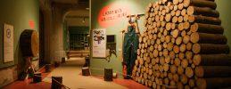 MACHmit! Museum für Kinder in Berlin Prenzlauer Berg -