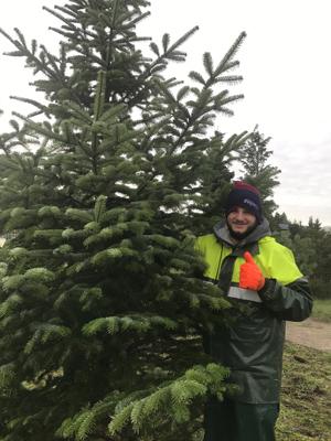 Vom 2. bis zum 4. Adventswochenende habt Ihr die Möglichkeit, euren Weihnachtsbaum in dieser Weihnachtsbaumanlage selbst zu sägen