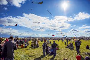 Festival der Riesendrachen | ytti.de Empfehlungsportal | ytti