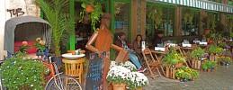 blumencafe-berlin-prenzlauerberg-papageien
