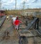 Vogelkundliche Führungen für die ganze Familie im Natur-Park Schöneberger Südgelände