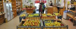 Äpfel kaufen im Hofladen © Obstgut Franz Müller