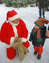 Weihnachtsbaum schlagen kleinbeeren 2012